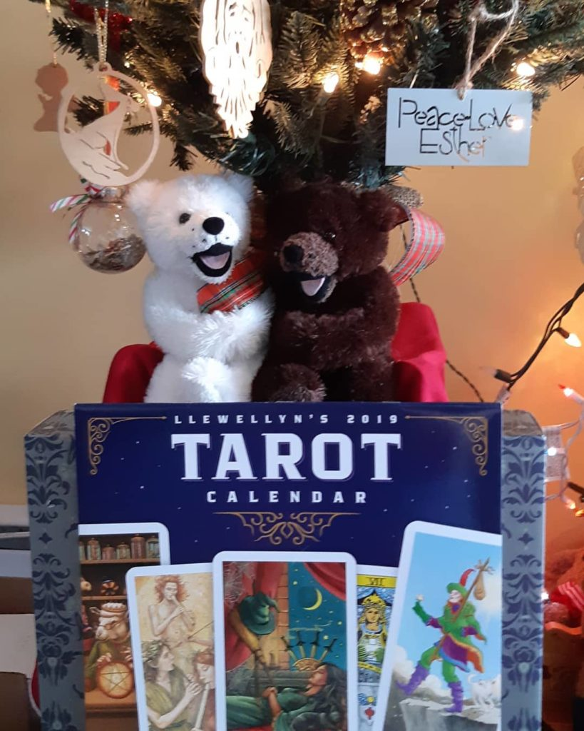 We still have a few 2019 Astrological, We'Moon, and Tarot calendars in stock!