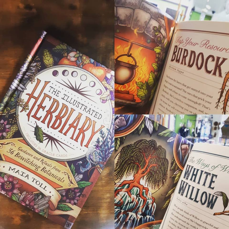 This beautiful book is filled with herbal descriptions and enchanting artwork!